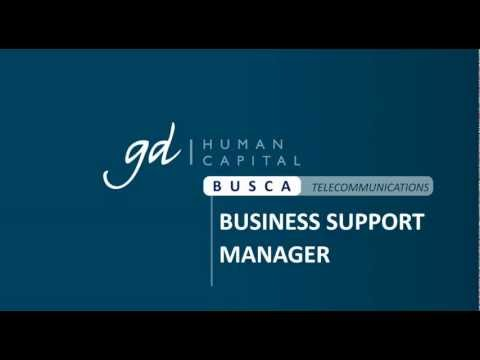 Ofertas Empleo - BUSINESS SUPPORT MANAGER