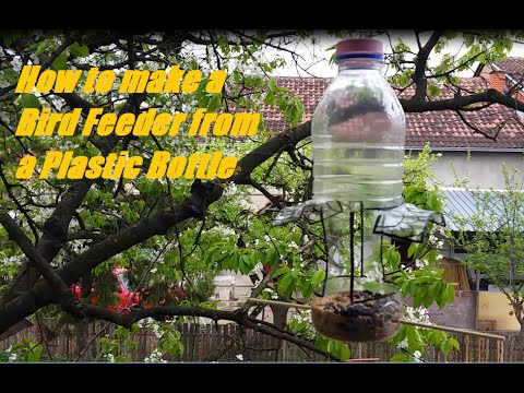 How to make a Bird Feeder from a Plastic Bottle