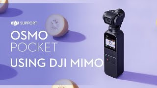 How to Use Osmo Pocket's DJI Mimo App