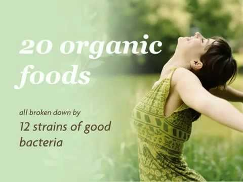 Organic 2012 Blend Natural Probiotic