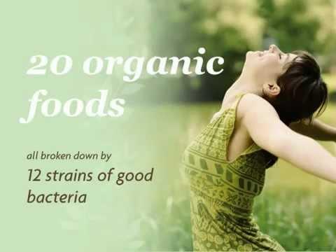 Organic 2012 Blend Natural Probiotic