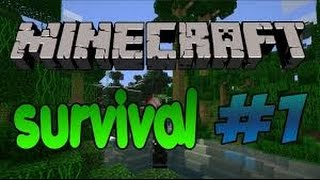 Minecraft Survival *1(Bol Edit)
