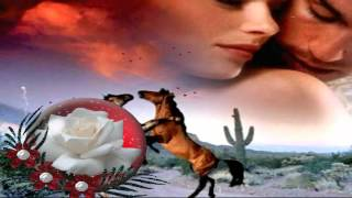 Die Paldauer  -  Weil Ich Dich Liebe