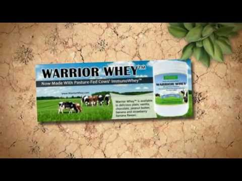 Best Whey Protein Powder - Warrior Whey