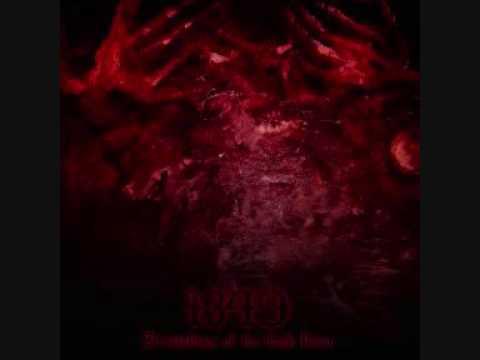 1349 - Maggot Fetus... Teeth Like Thorns
