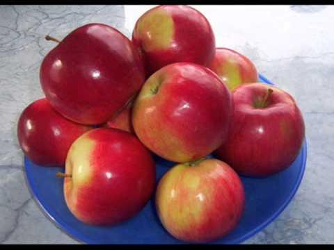 Gyümölcsök betegség ellen