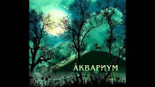 Аквариум - День радости