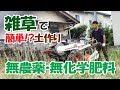 【土作り基本編#1】農薬・化学肥料不使用で、雑草を活かす!