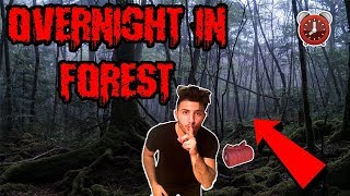 24 HOUR OVERNIGHT CHALLENGE IN A HAUNTED FOREST | WE GOT LOST OVERNIGHT IN A FOREST!