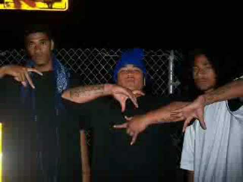 Tongan Crips Video