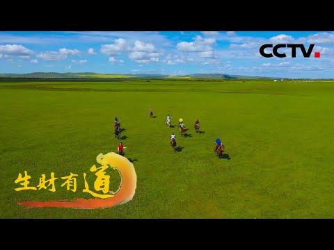 中國-生財有道-20210802 生態中國草原行——酣暢草原體驗美味額爾古納