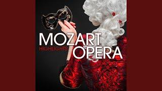 The Magic Flute K 620 Act Ii The Queen Of The Night 39 S Aria 34 Der Hölle Rache 34