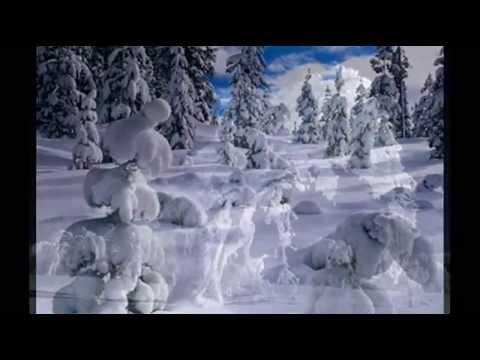 Моя любимая Зима!