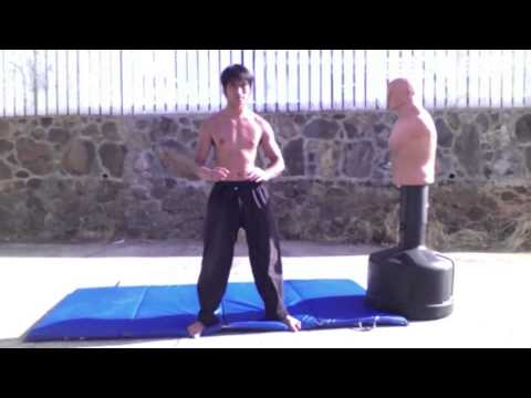 Wing Chun JKD TKD Boxing Tai Chi and Capoeira Mixed Striking Training Image 1
