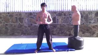 Wing Chun JKD TKD Boxing Tai Chi and Capoeira Mixed Striking Training