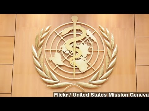 'Drastic Action' Needed To Stop Ebola Outbreak