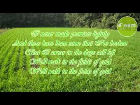 The Sante Barley Feat. Fields Of Gold By Sting With Lyrics video