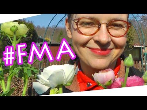 Garten Rundgang März 2015 #Vlog