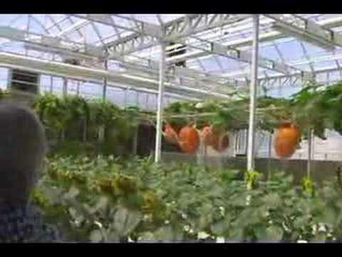 Living With the Land Greenhouses