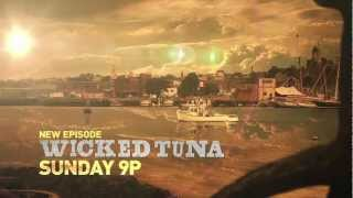 Wicked Tuna (2012) - Official Trailer