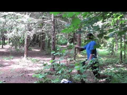 Disc Golf Beaver State Fling 2011 Hole 1 To 5
