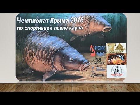 чемпион россии по ловле карпа
