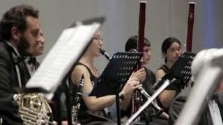 Festival Joseph Haydn en el Teatro Lírico