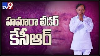 TRS MLAs to elect KCR as TRSLP leader