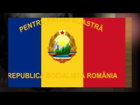 Chemarea Partidului (Republica Socialistă România)