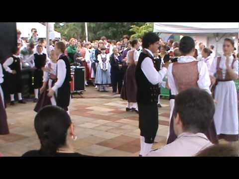 Schön Polka - Best Polka festa
