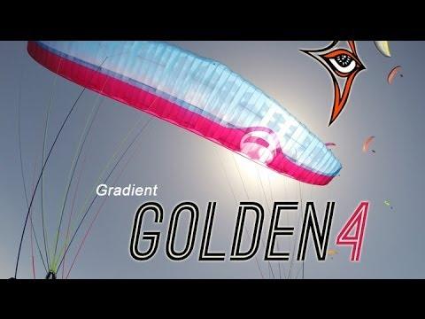 Gradient Golden 4