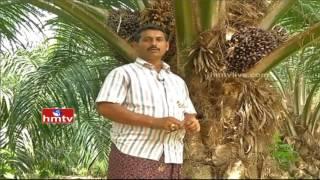 Nela Talli | watch special program on OIL FAM Crop by khammam district