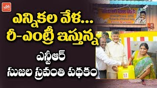 CM Chandrababu Restart again NTR Sujala Sravanthi Scheme | 2019 Elections | AP News