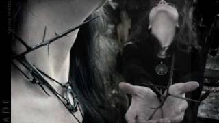 Depeche Mode - I Feel Loved (Peter Rauhofer Mix) VJ danijel