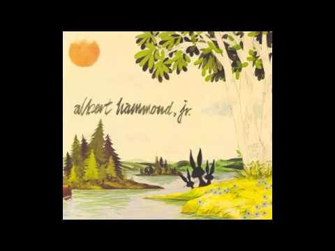 Albert Hammond Jr - Bright Young Thing