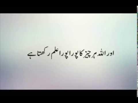 Surah Nur Ayat 35 + Urdu Translation