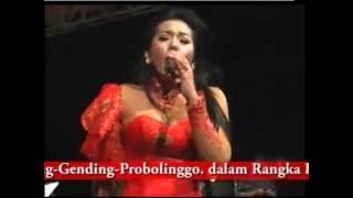 download lagu Monata - Aku Tak Butuh Cinta #devi Aldifa gratis