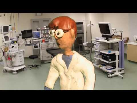The Scientist And The Fly Claymation Cartoon