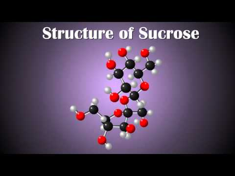 What are Disaccharides ???... Structure of  Glucose, Sucrose and Fructose...