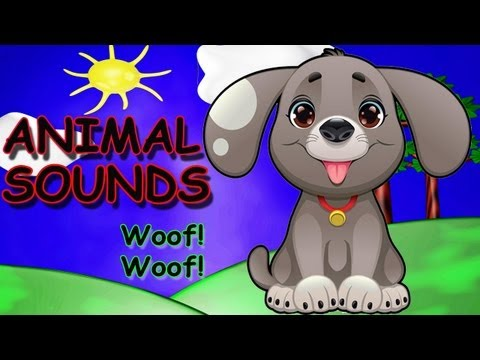 Animal Sounds Kids Song -- Kids Songs by The Learning Station