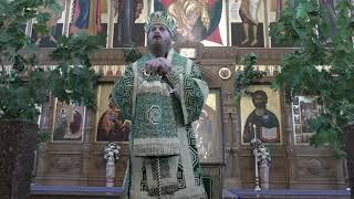 День Пятидесятницы  Проповедь. Епископ Амвросий