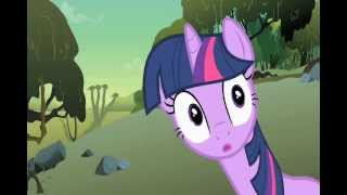 a.d.g.h and mlp fim