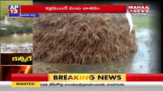 Untimely rain damages crops in Srikakulam District