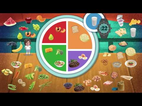 """Build a Balanced Meal"" Witte Museum Interactive"