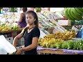 Tropical Fruits and exotic Girl in Pattaya, Thailand thumbnail