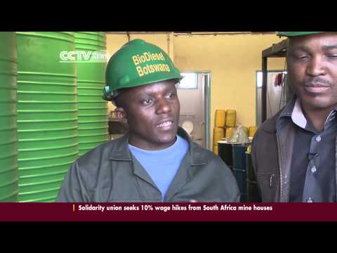 Botswana's biodiesel company pursues producing green energy