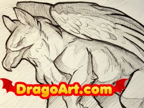 Draw Griffin Dragoart How to Draw a Griffin