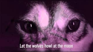 Watch Super Furry Animals Wolves video