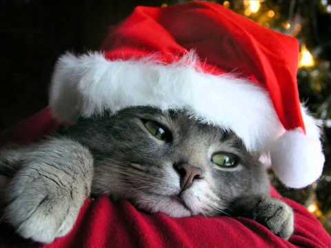 6 aplicaciones para crear videos personalizados de Navidad