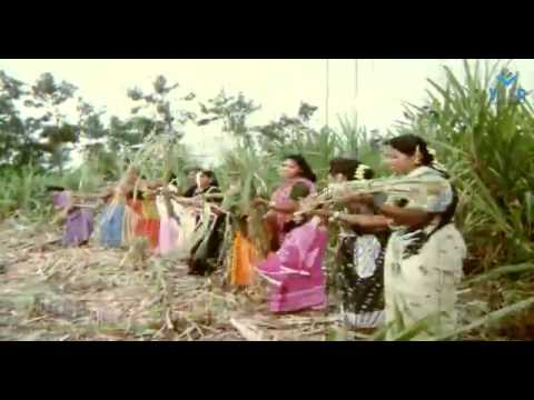 Okariki Okaru Todugaunte Video Song (Jayam Mande)